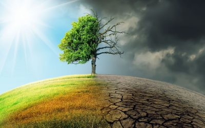 Es steht nicht überall Klimakrise drauf, wo Klimakrise drinsteckt